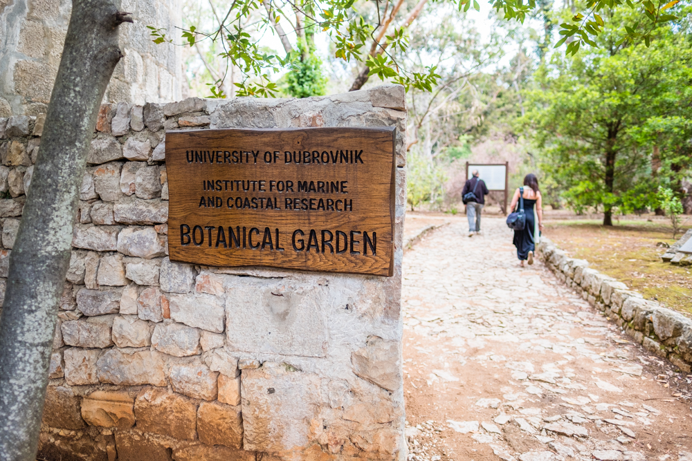 2.) A secret garden in itself , Lokrum has it's own Botanical Garden with 800 exotic plants from various parts of the world.