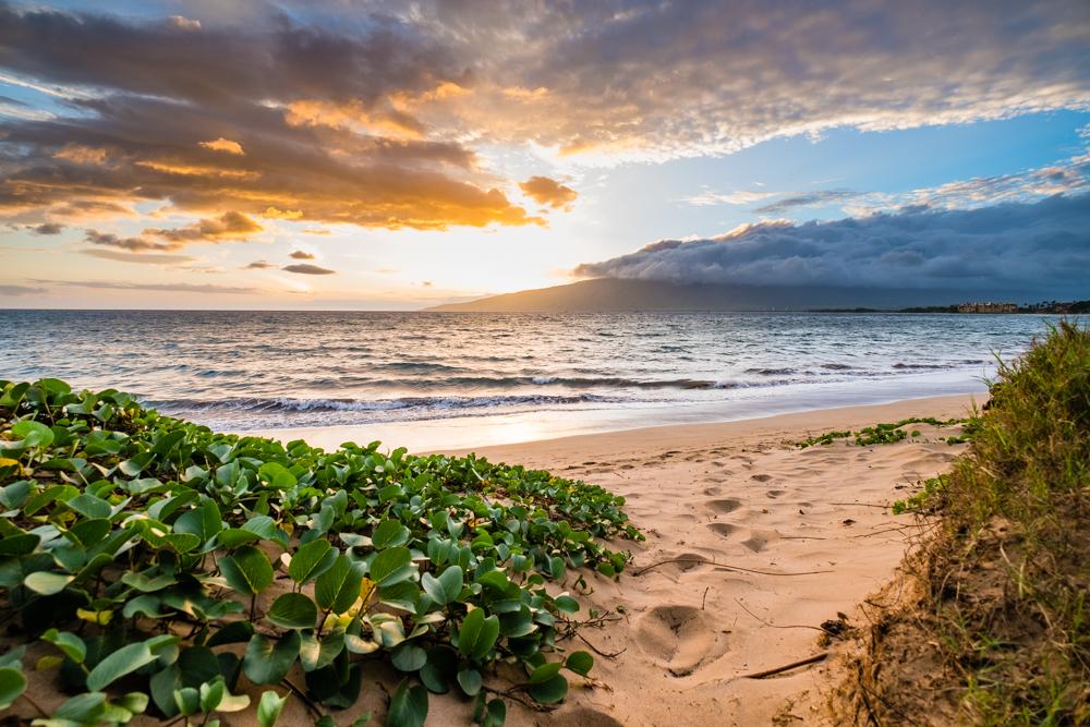maui hawaii kihei beach