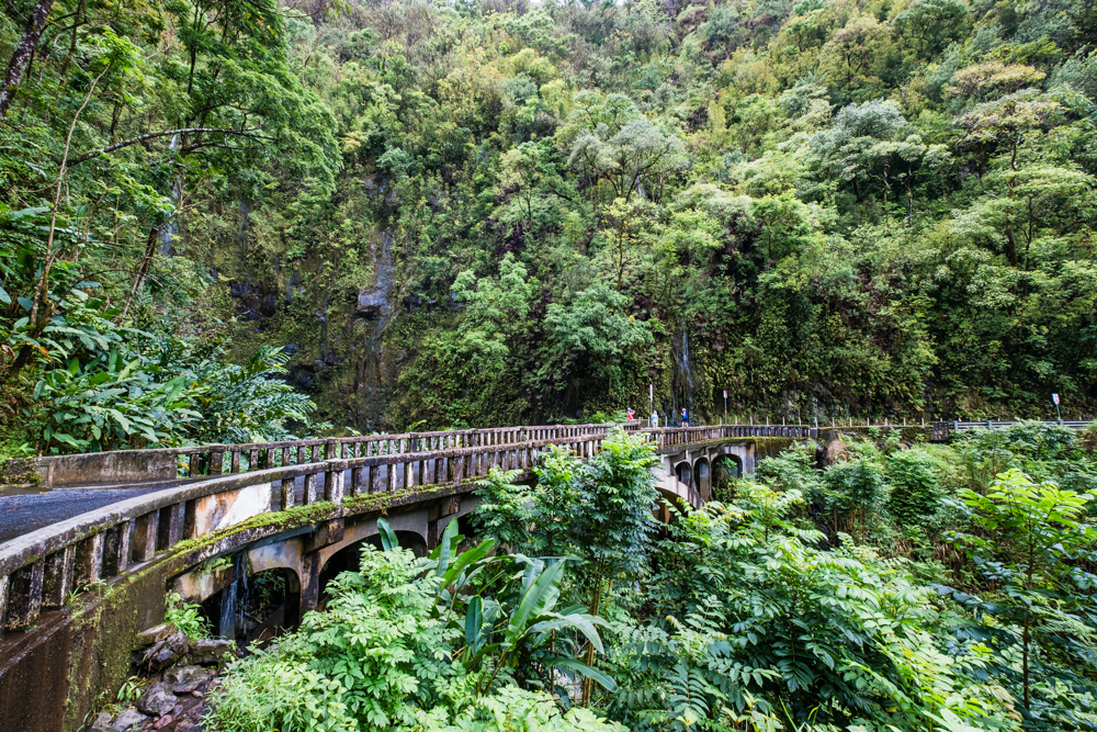 A view of Upper Waikani Falls from the bridge. There's not a lot of parking, so be prepared to park up the hill and walk back down to it.