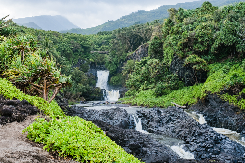 Another one of our favorite stops on the Road to Hana. Makes sure to save plenty of time to explore this park, there's a lot to see!