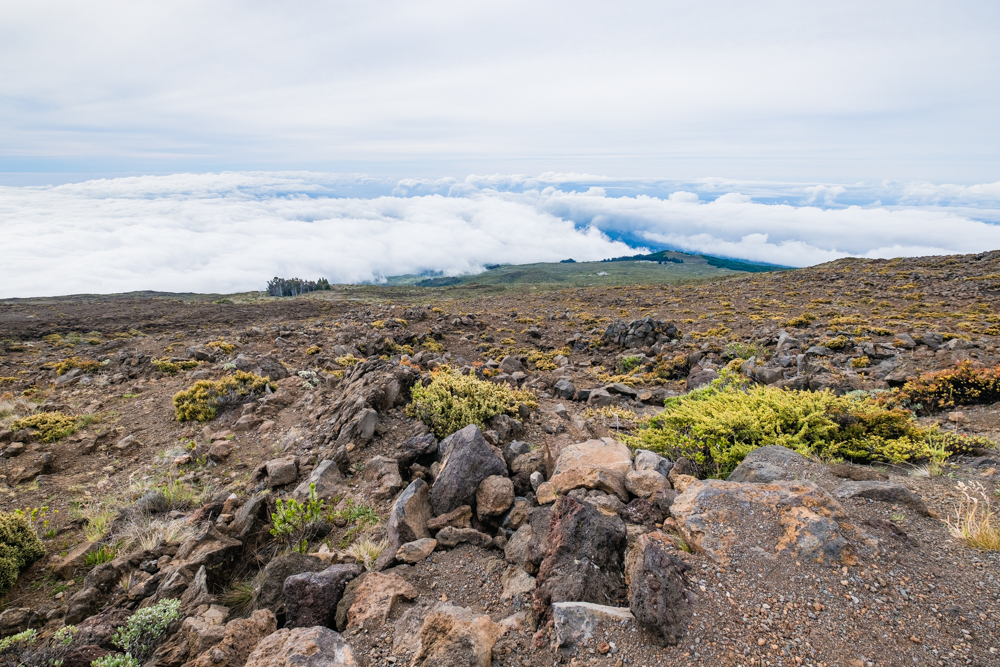 The drive to the Haleakala Summit is filled with lots of opportunities to pull over and capture the view.