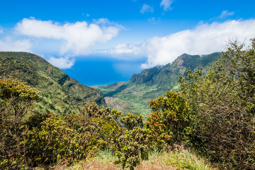 Due to recent flooding, we were not able to hike the Na Pali Coast. However, this provided a spectacular view of the valley along the Na Pali Coast.