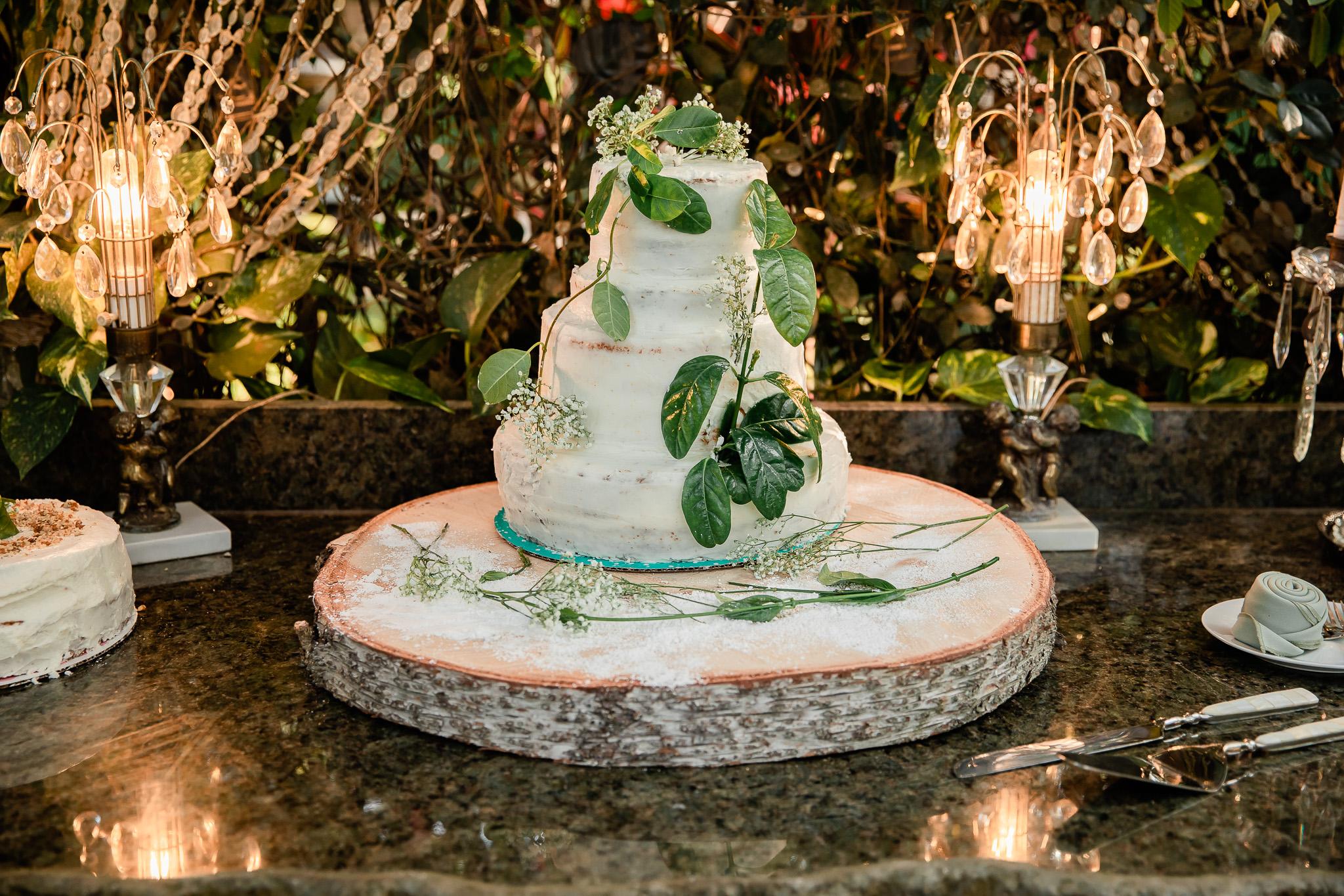 TAMPA_WEDDING_GIGIS_COUNTRY_GARDEN_CJMZ_TJP48332.jpg
