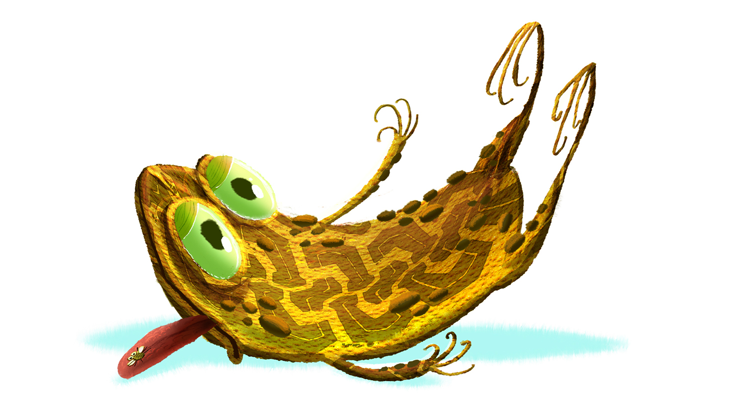 squished toad 3.jpg