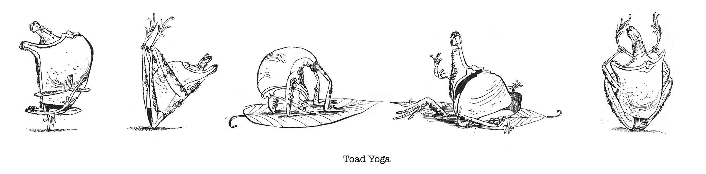 toad yoga.jpg