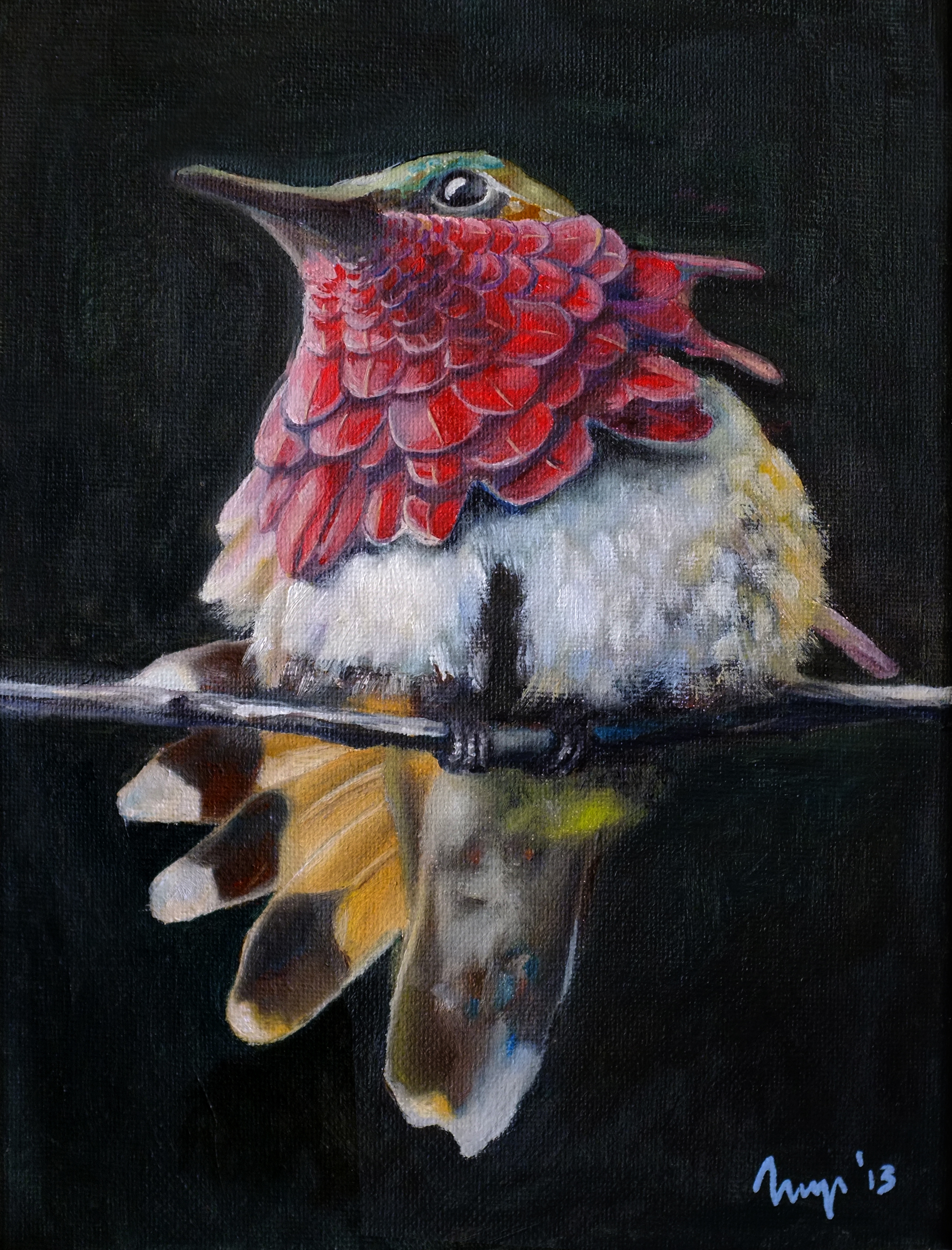 PARADISE BIRD  25 x 30cm  Oil on canvas / 2013