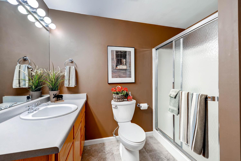 5632 Irish Pat Murphy Dr-large-032-Lower Level Bathroom-1499x1000-72dpi.jpg