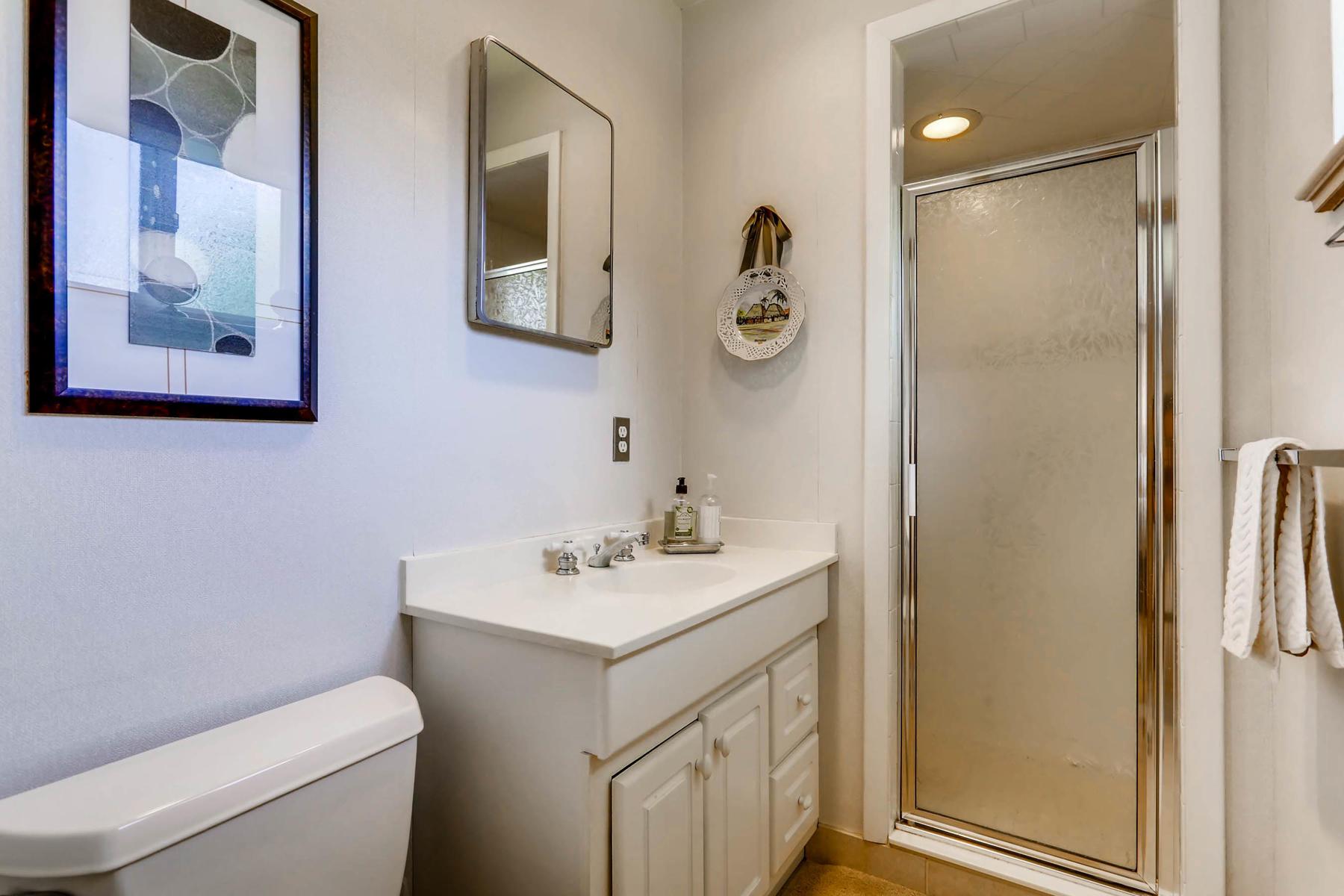 2912 S Race Street Denver CO-018-15-Master Bathroom-MLS_Size.jpg