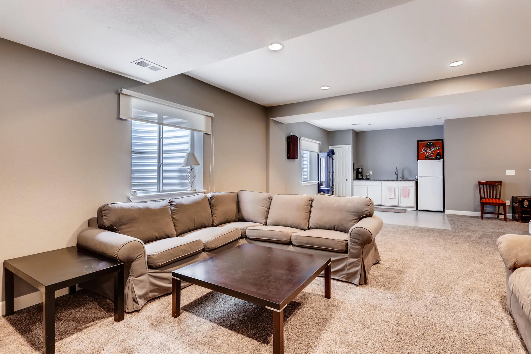 3385 S Jericho St Aurora CO-020-14-Lower Level Family Room-MLS_Size.jpg