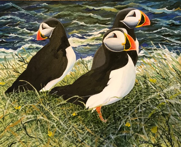 puffins (Small).jpg