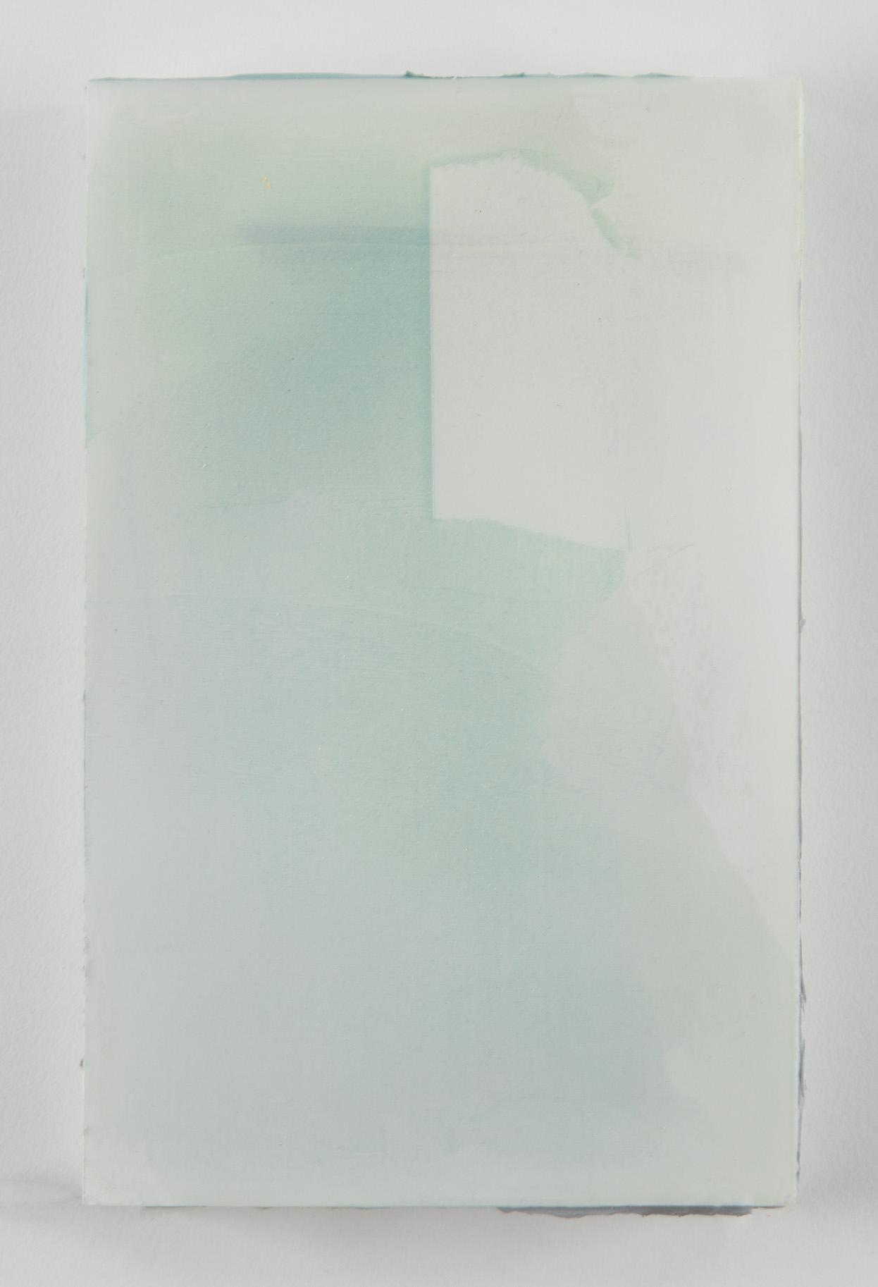Lichen Memory 1, acrylic on plexiglass, 8.25 x 5.25. x.75 inches, 2016