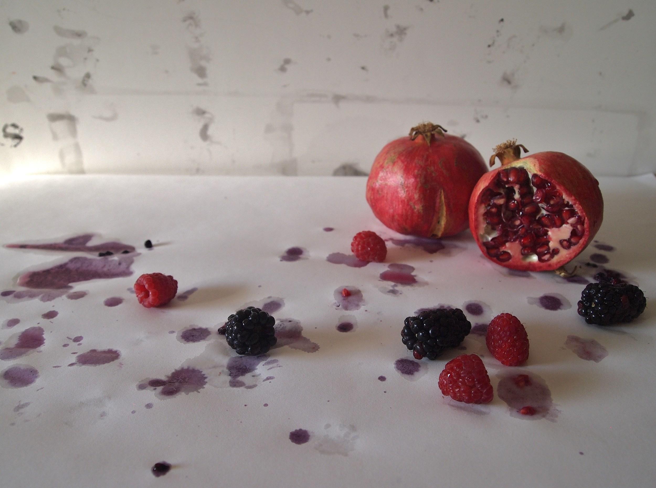berrystain2_wideeyeswise