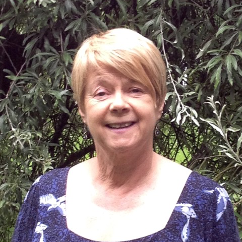 Liz Richardson Deanery & Diocesan Synod Rep -