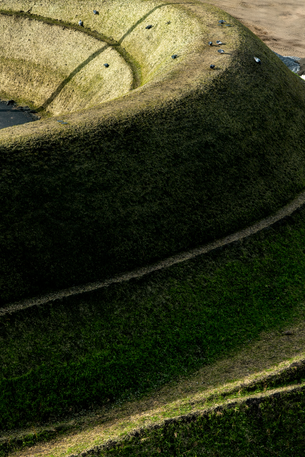 Nature Fabricated-03.jpg