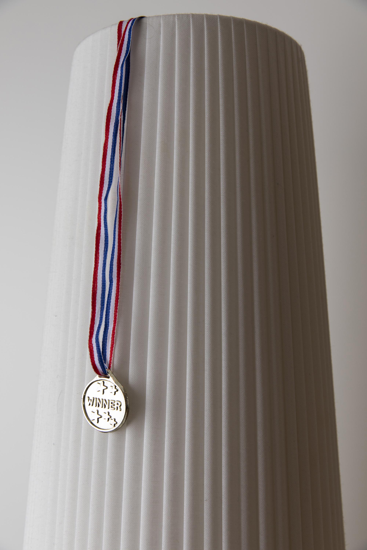 Medal,  24 x 36 inches, 2018, archival inkjet print