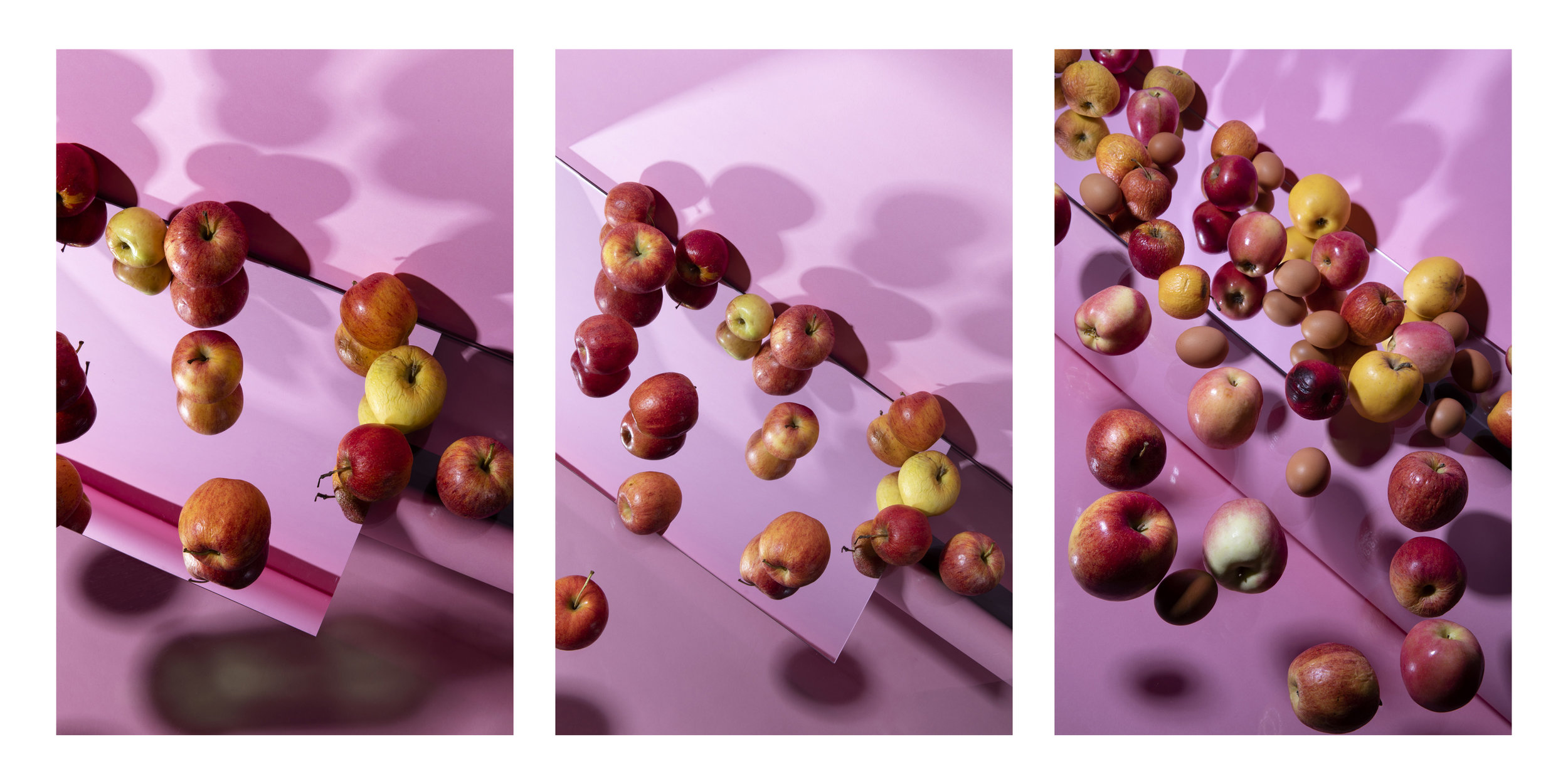 Pink Frenzy , Triptych, 48 x 24 inches, 2018, archival  inkjet print