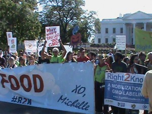 Marchers in front of White House
