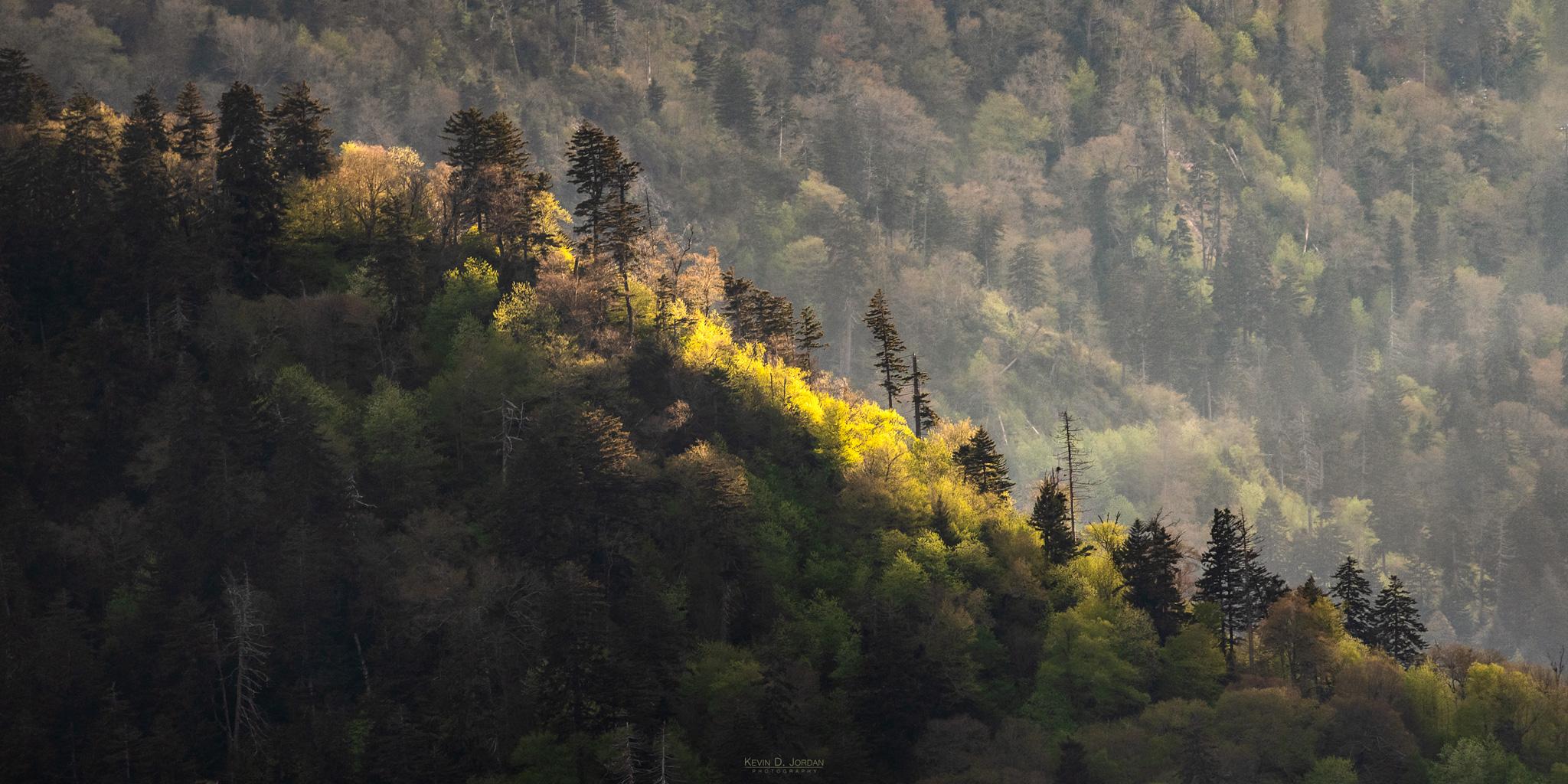 Spotlight_Ridge-Great-Smoky-Mountains_W.jpg
