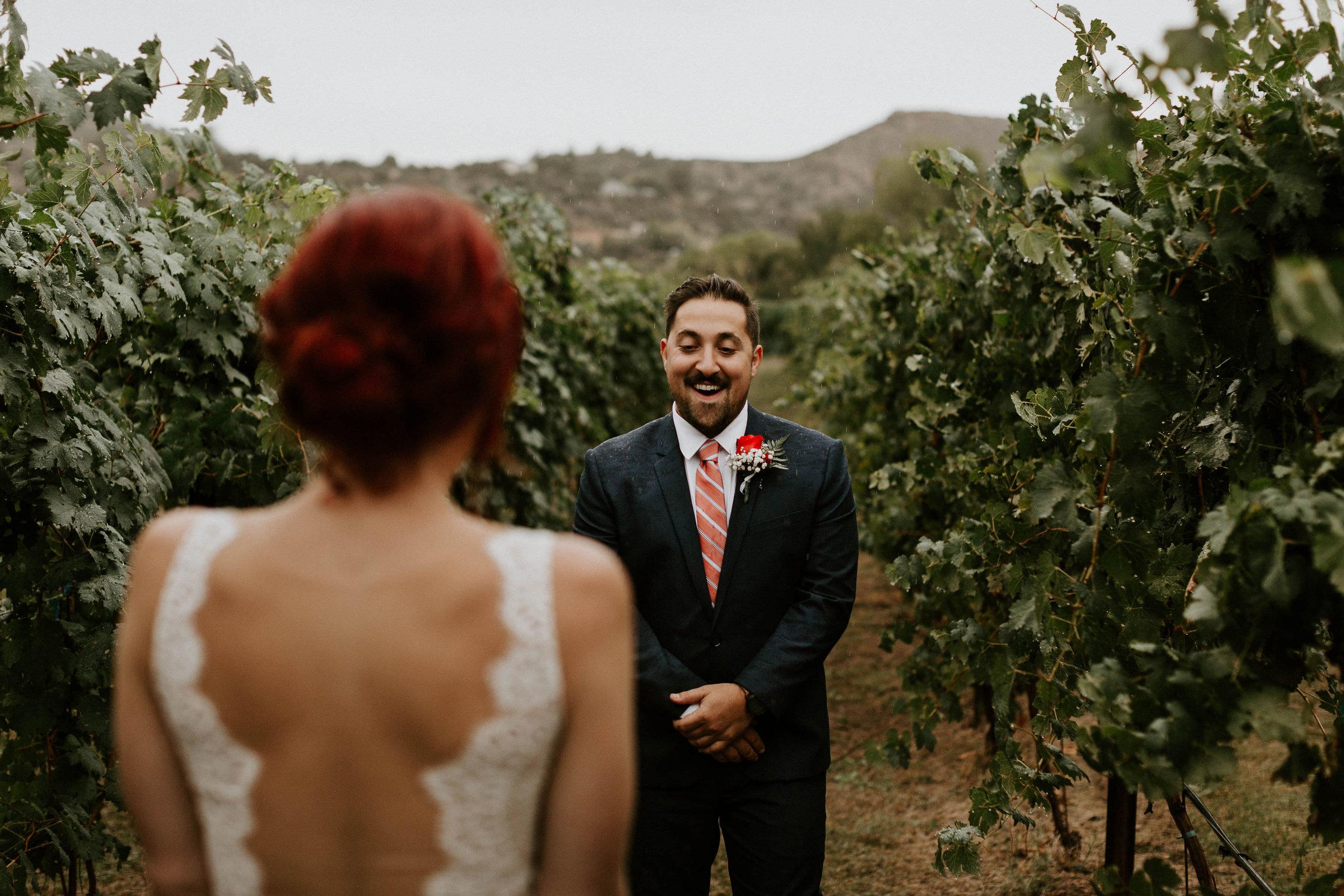 First Look at Vineyard at Dancing Apache Ranch in Sedona Arizona