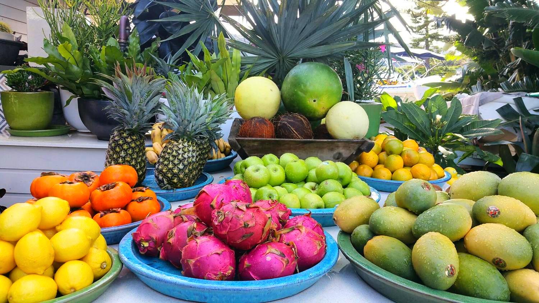 boathouse fresh fruit