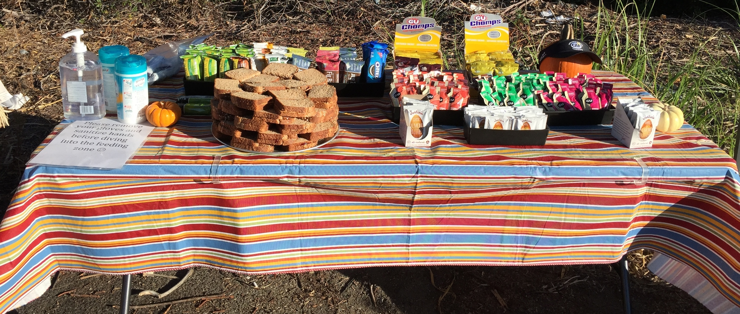 Awesome rest stops loaded with home made cakes, treats, fruit and sandwiches etc