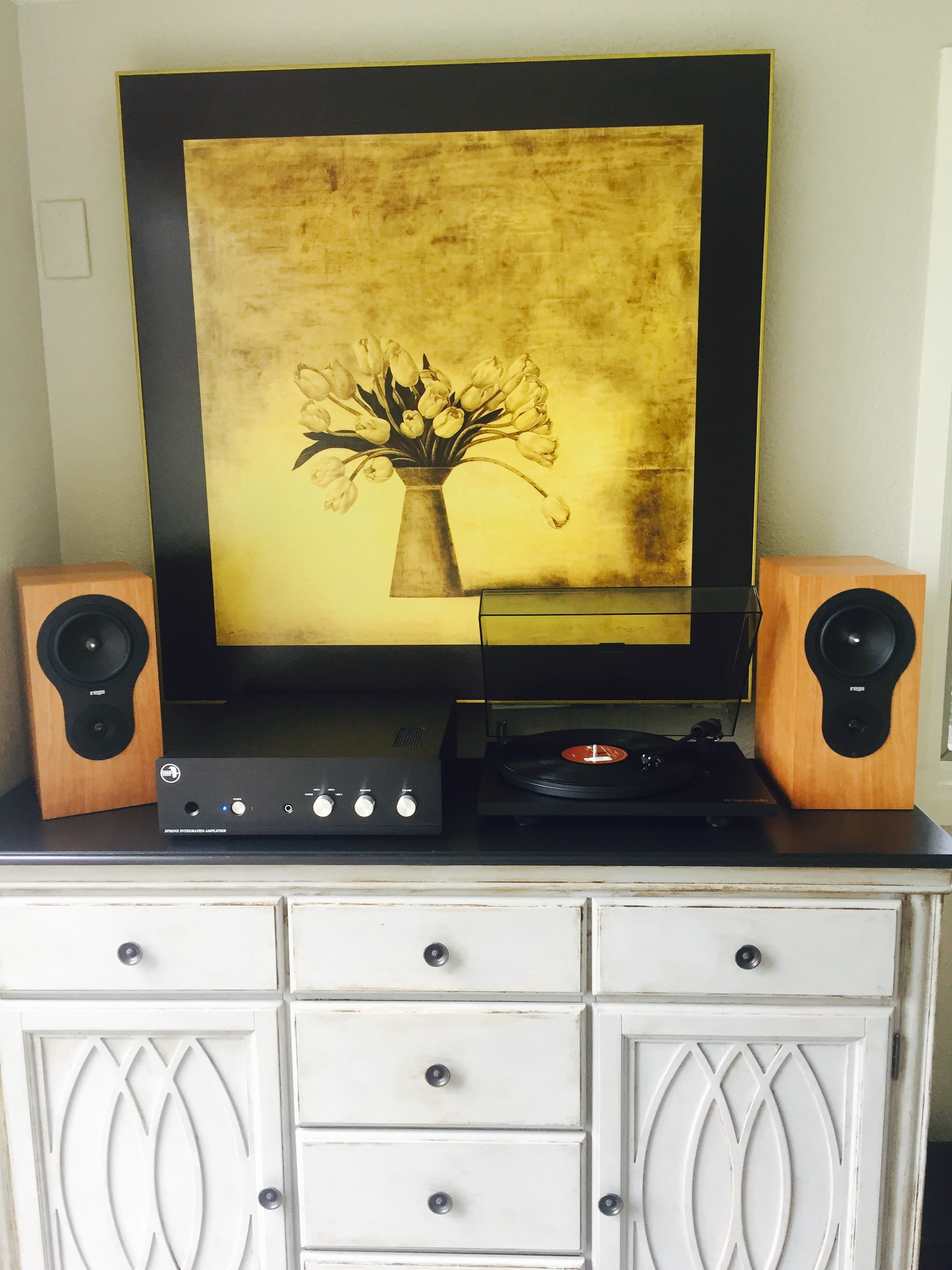 Aaron T System: Rogue Audio Sphinx integrated, Rega RX1 speakers, Project turntable. NICE!!