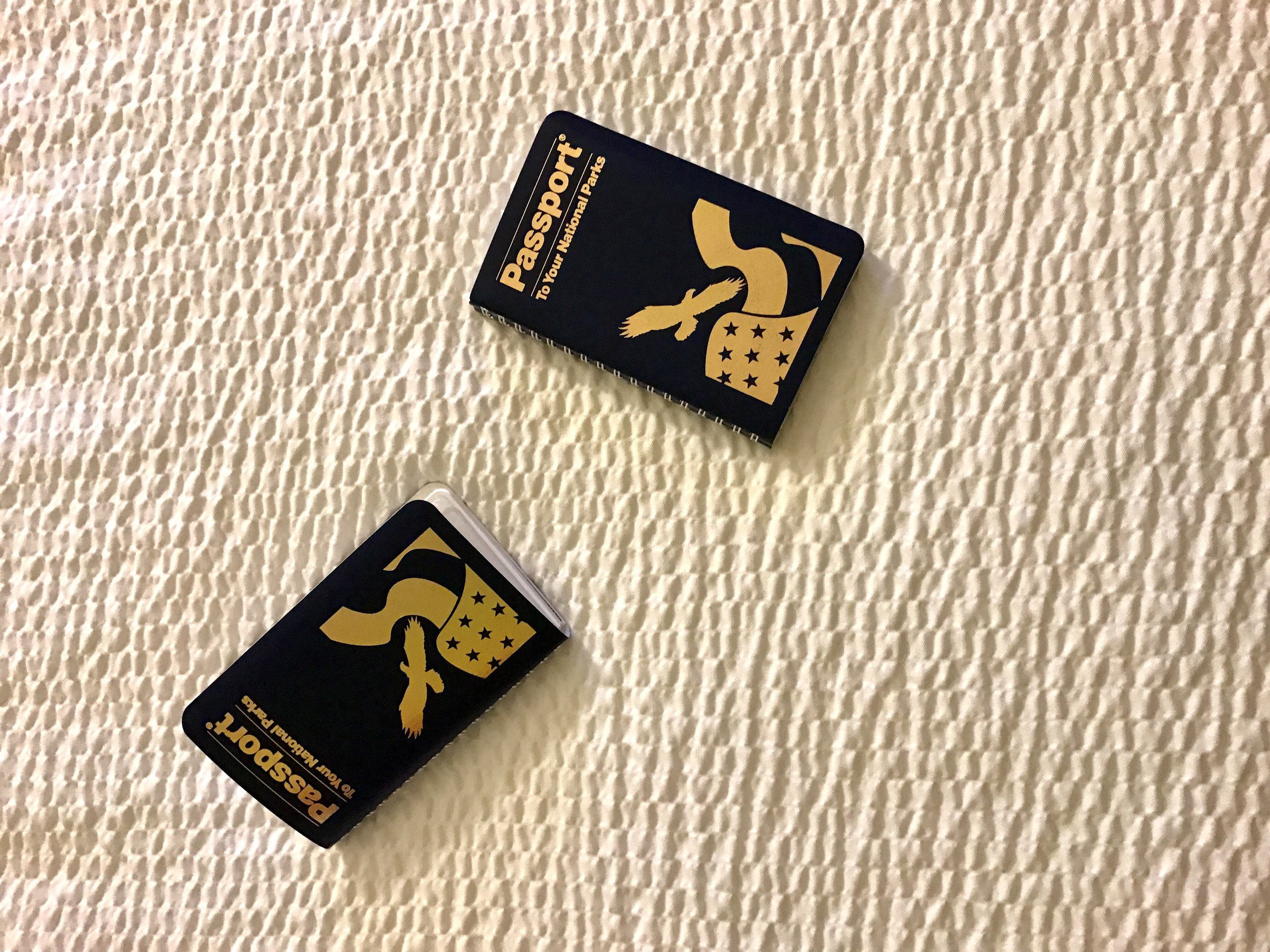 Be sure to buy your kids National Park Passports while they are young! They get a stamp at each park and monument they visit! My kids think these are more valuable than their regular passports! And I love them because they always provide a cheap souvenir of each park!