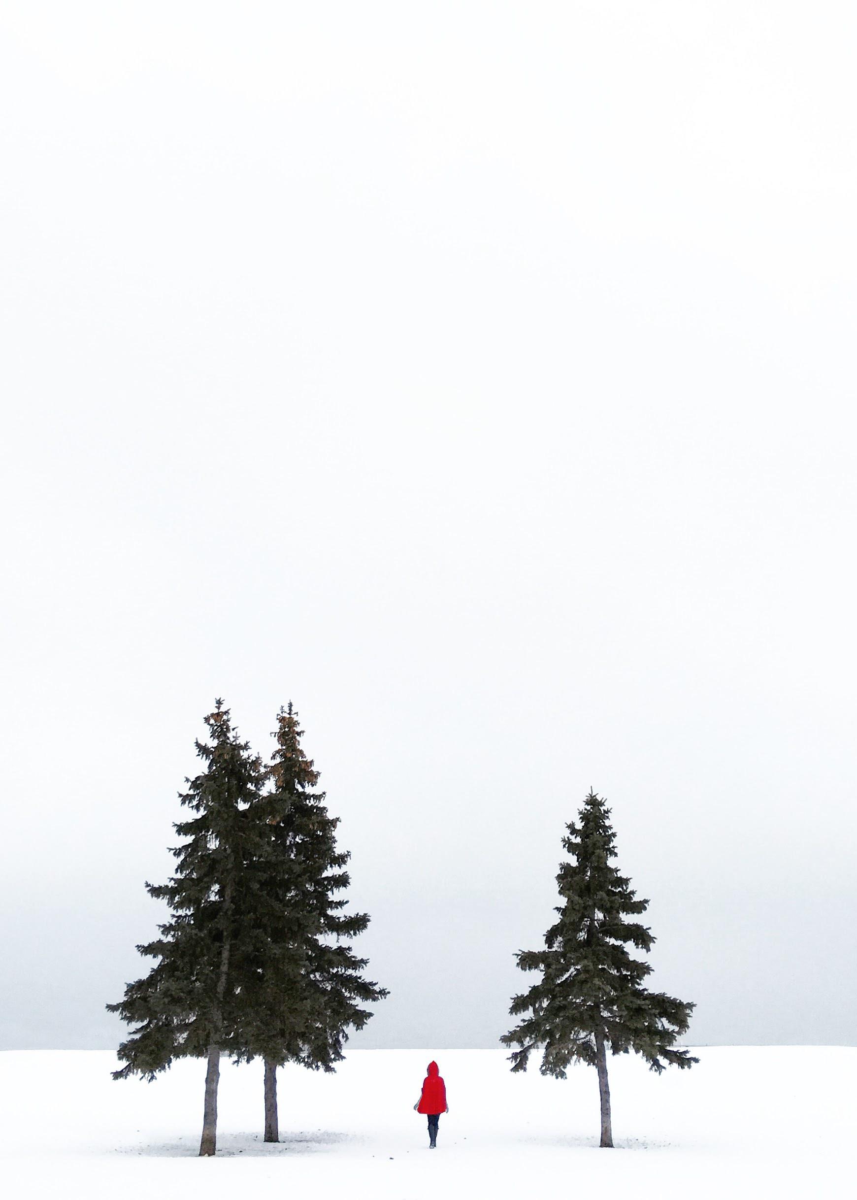 Image 97: 5x7 Vert or Horiz