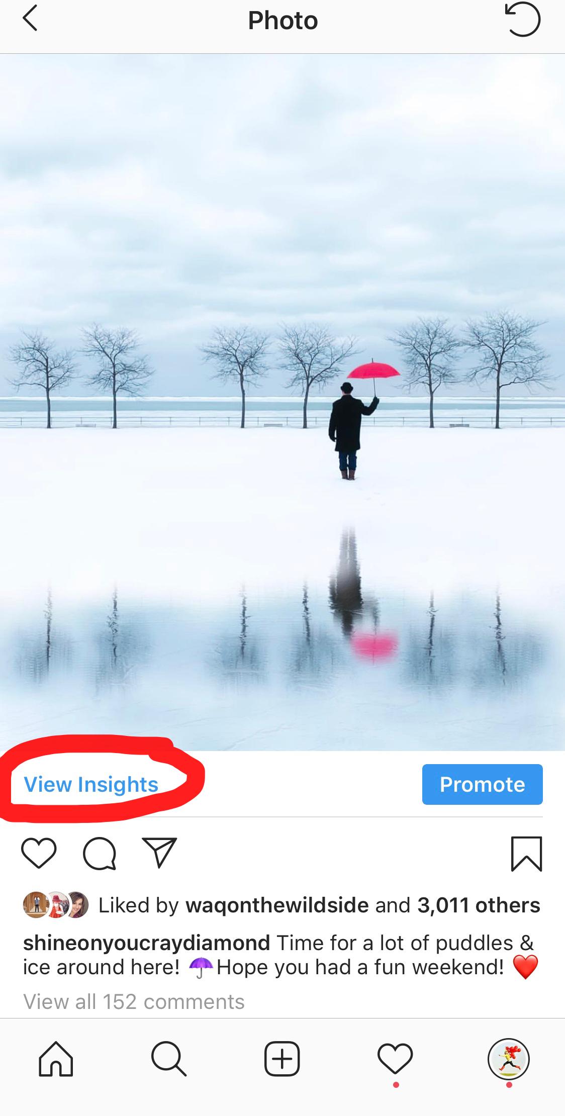 "Influencer ""Insight"" Link"