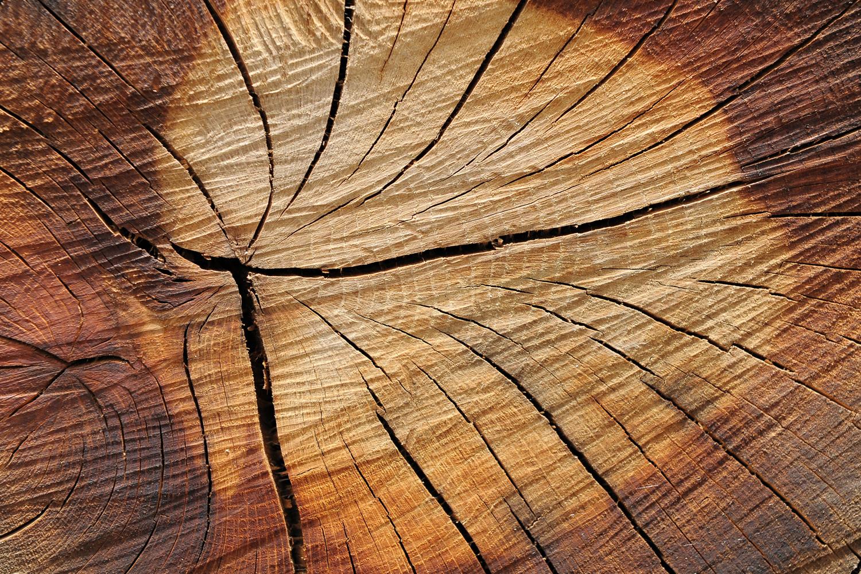 Printing On Reclaimed Wood Kristensen Smith Original Photography
