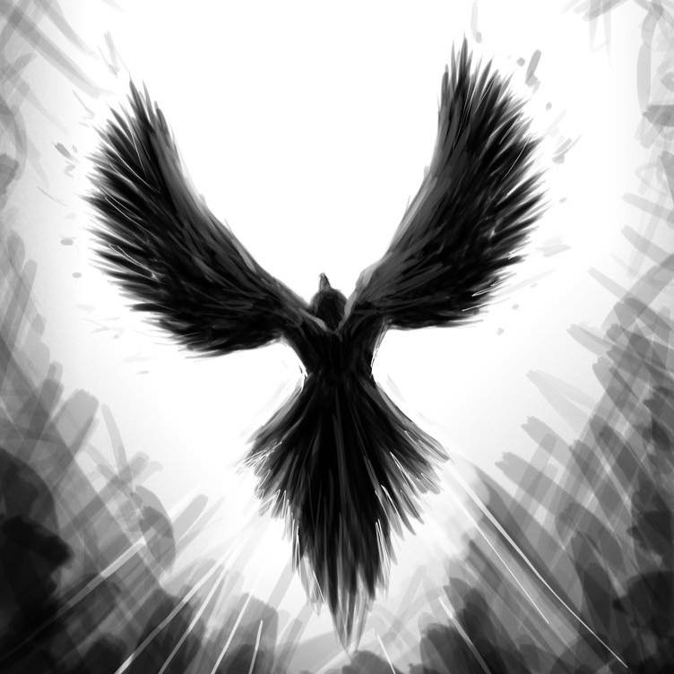 freeraven23.com - Free raven 23