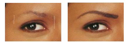 brow darkhair b4.png