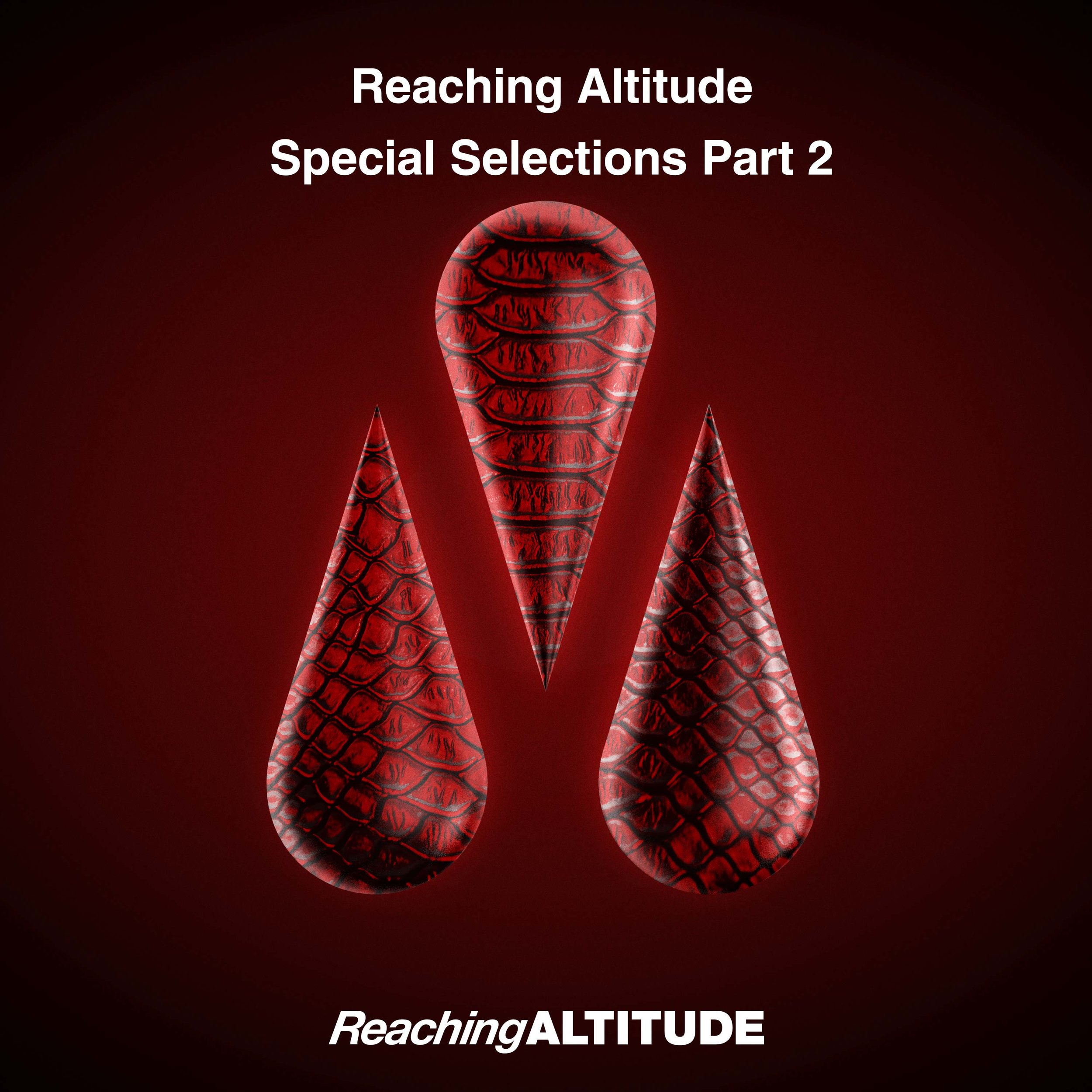 RA071-Various-Artists---Reaching-Altitude-Special-Selections-Part-2.jpg