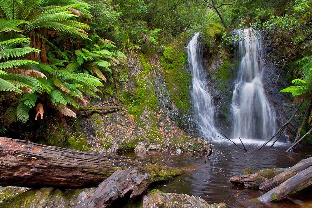 Hogarth_Falls,_Tasmania.jpg