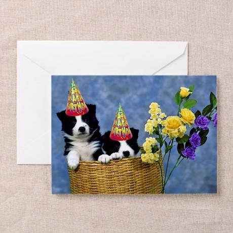 border_collie_birthday_greeting_cards_pk_of_10.jpg