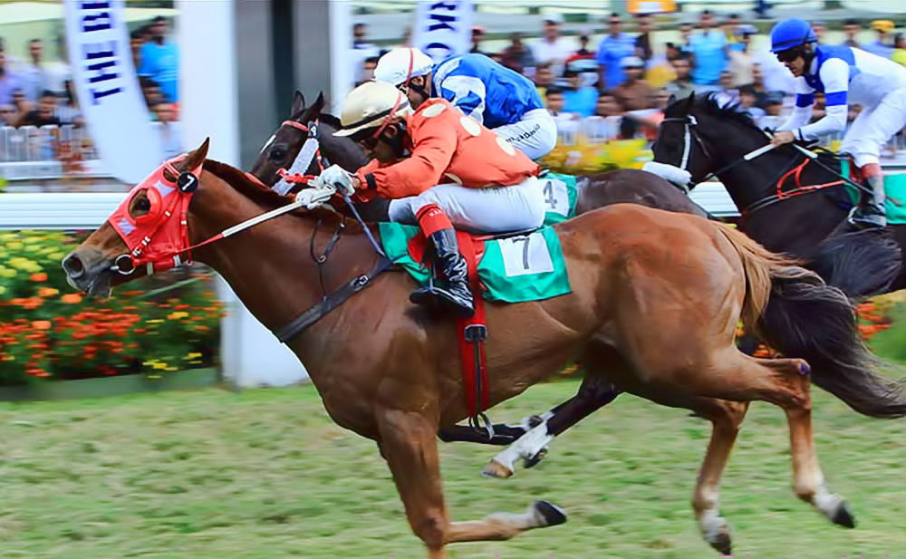 Colour Of Courage - The Best Developers Cup / Mauritius Turf Club (p)