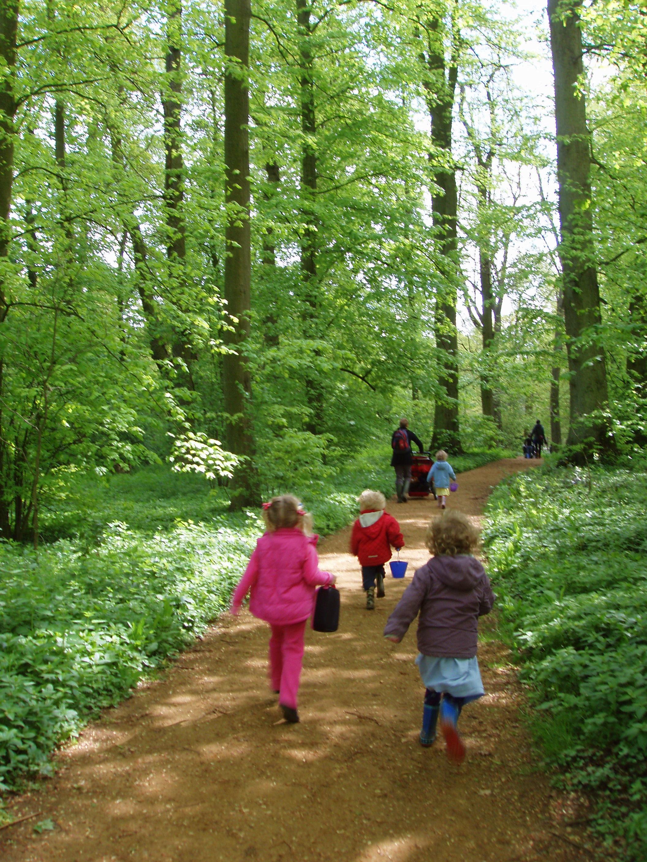 Arboretum run.JPG