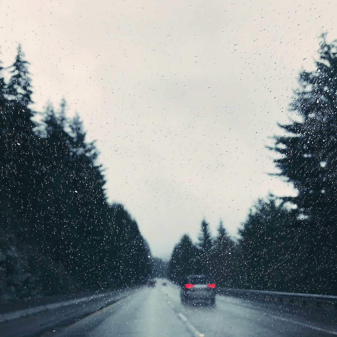 Driving in the rain. Pacific Northwest winter.