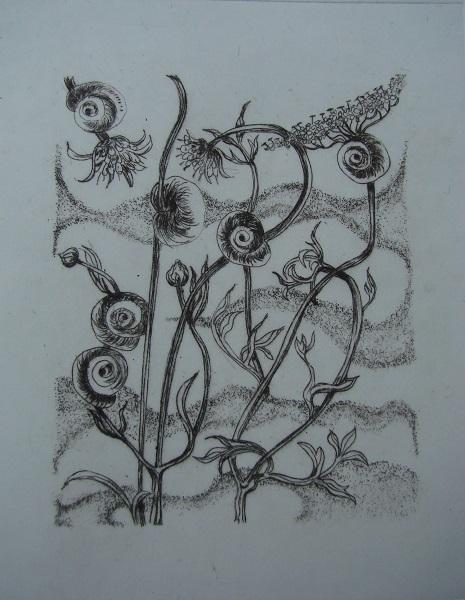 Liz Kelleher 'Snailsway' drypoint engraving
