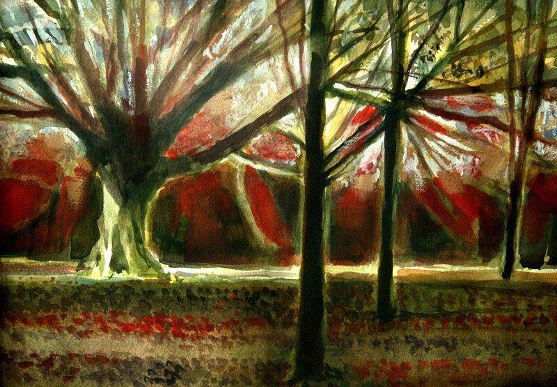 Park Wood IV Watercolour £540 framed