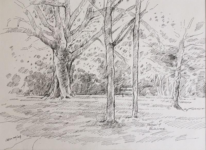 Park Wood ink drawing II £190