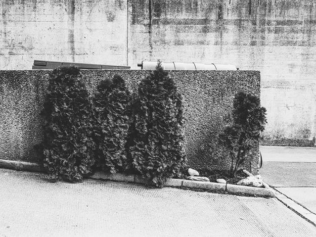 Untitled-(25)-(2).jpg