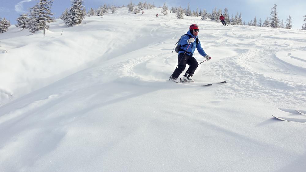 Alpuide_skiing