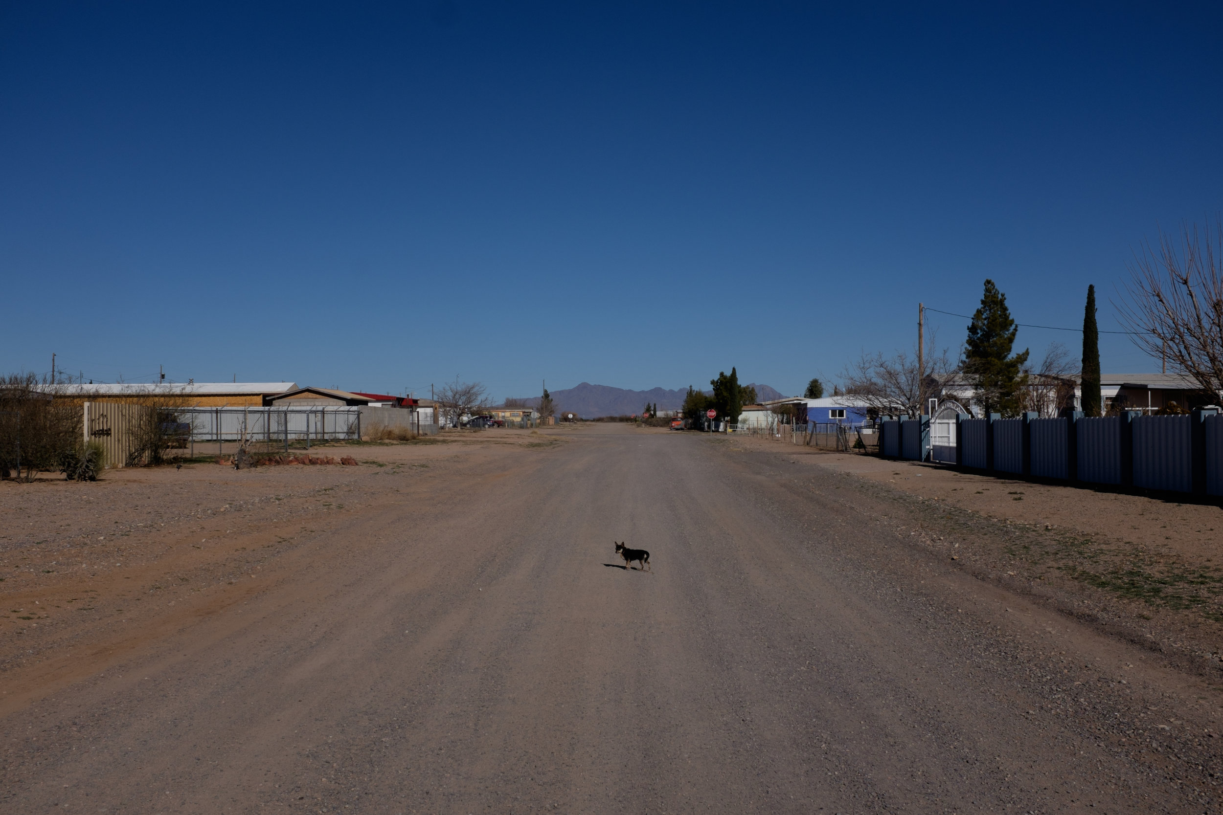 A dirt road in Columbus, New Mexico