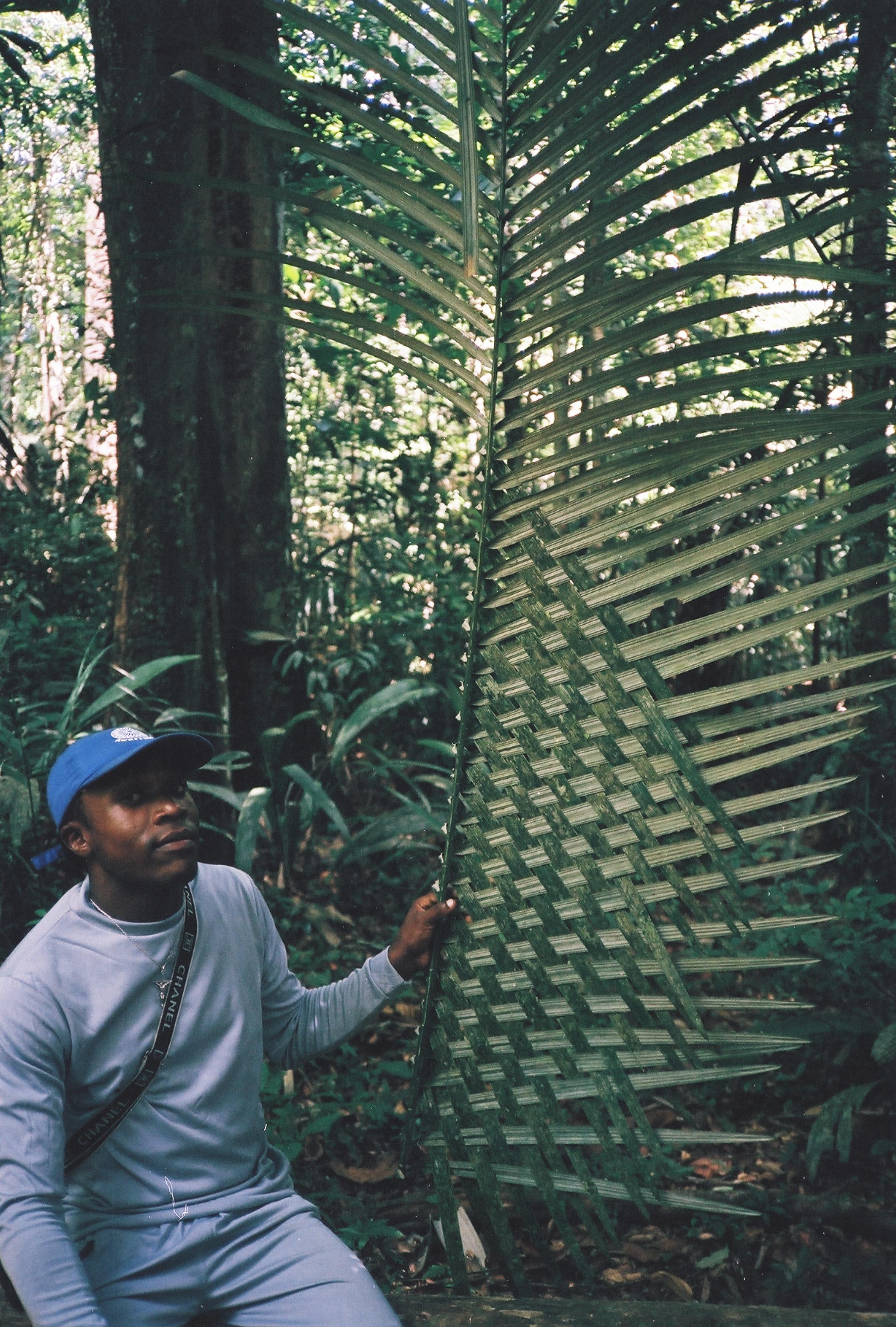 Jungle Weaver.jpg