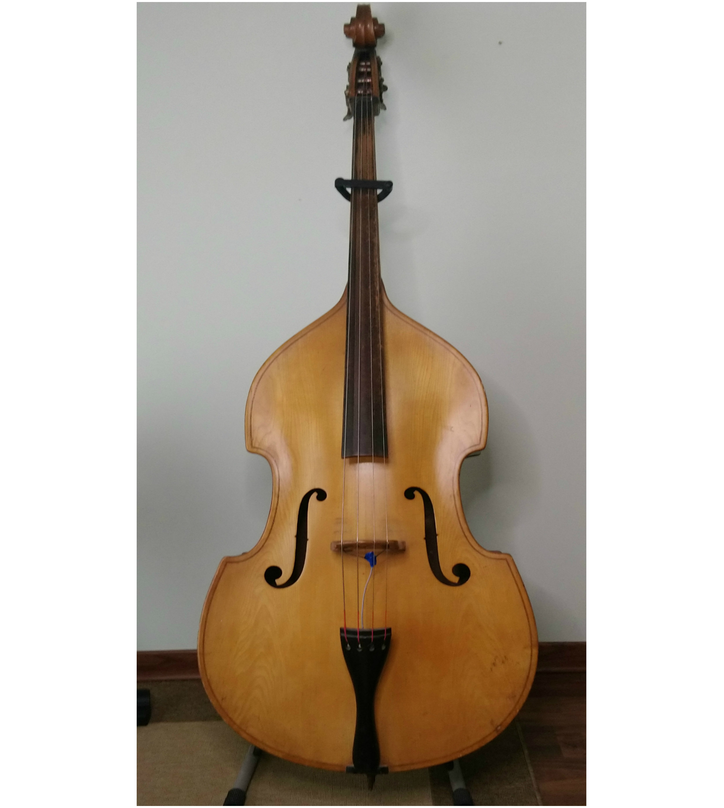 Blonde Double Bass, Germany (1930s) -