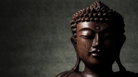 The science of happiness Buddha's Brain book review.jpg