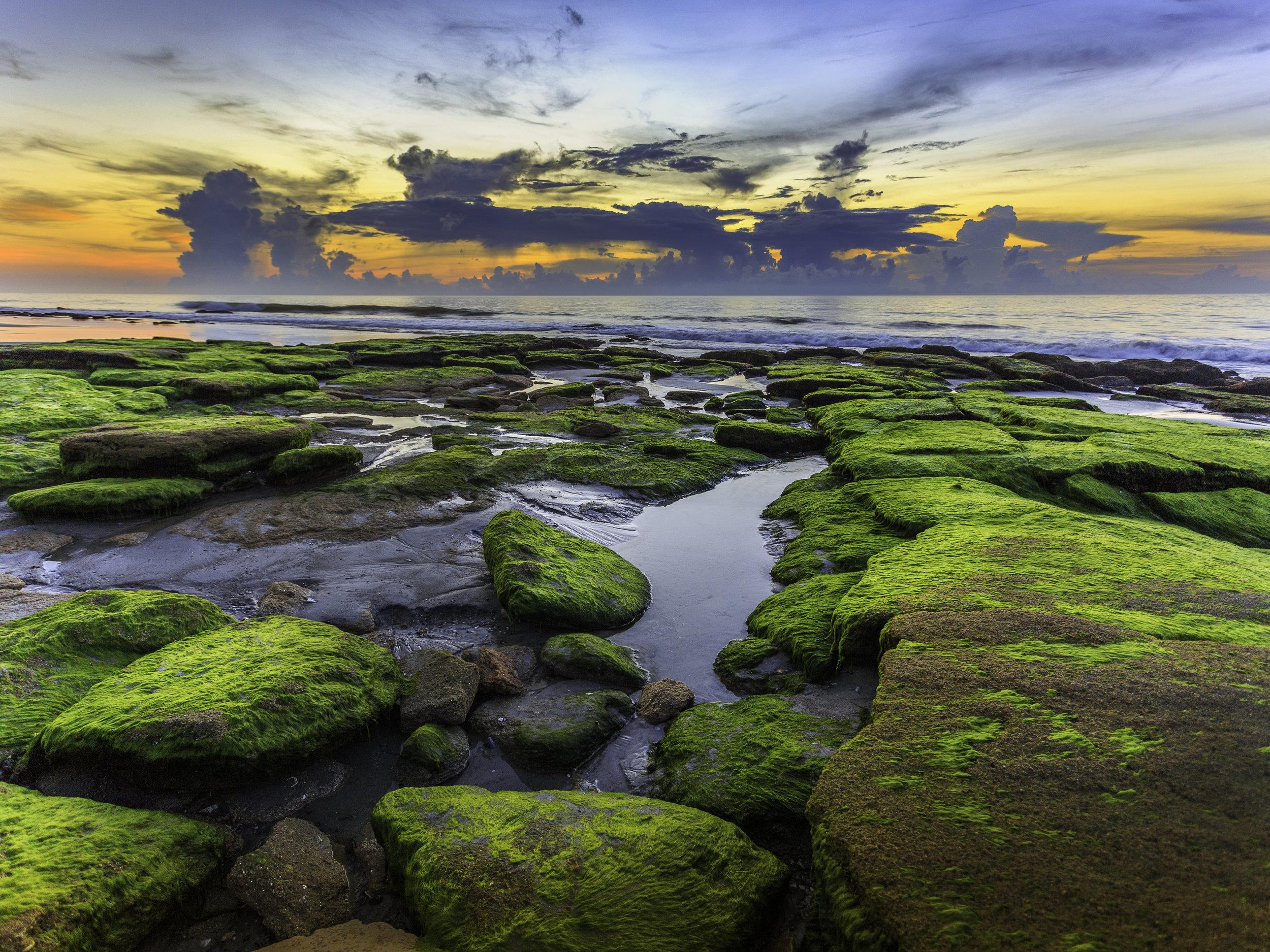 Kure Beach, Coquina Rocks