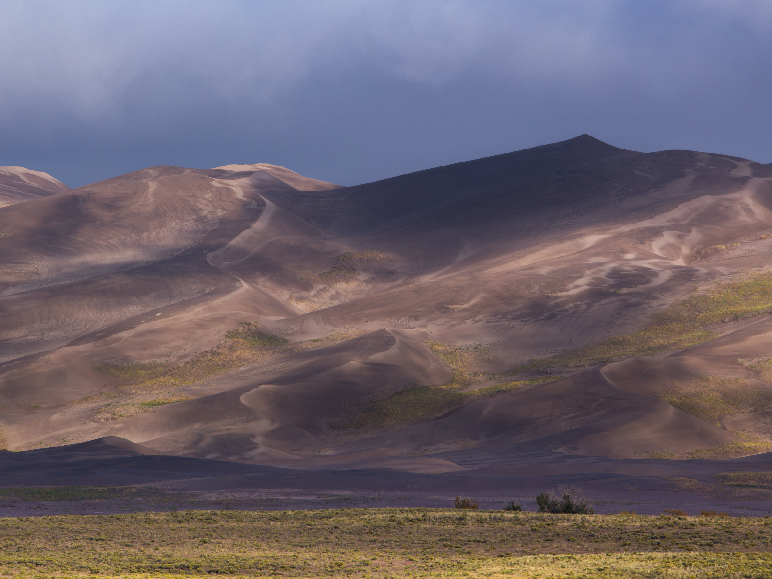 Out Of The Fog, Great Sand Dunes National Park  © Andrew Lockwood 2017