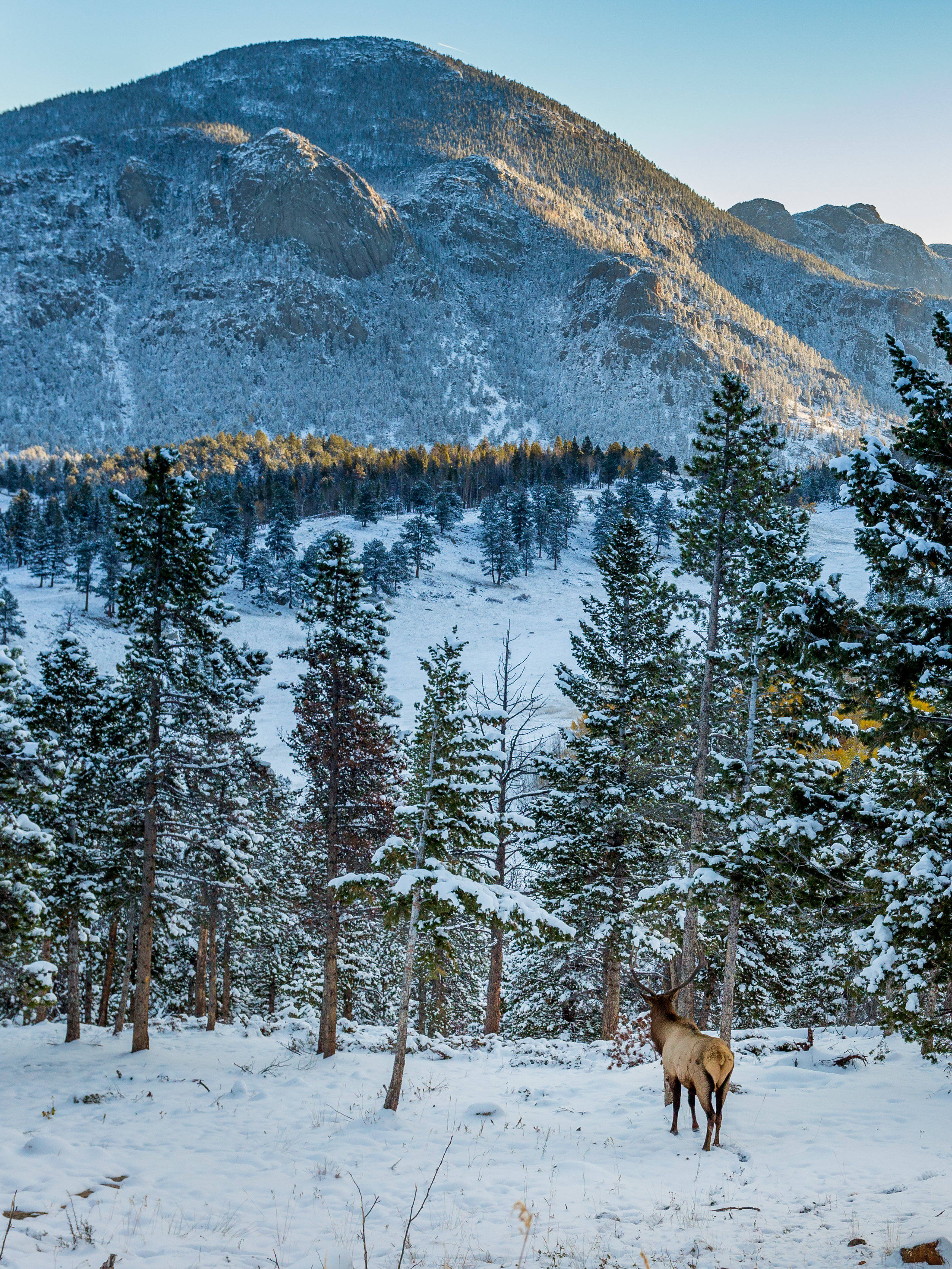 A New Day, Rocky Mountain National Park  © Andrew Lockwood 2017